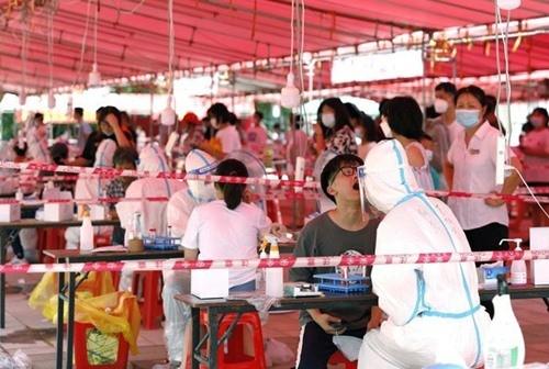 Chuyen gia Trung Quoc: Loai gam nham co the la trung gian lay COVID-19-Hinh-2