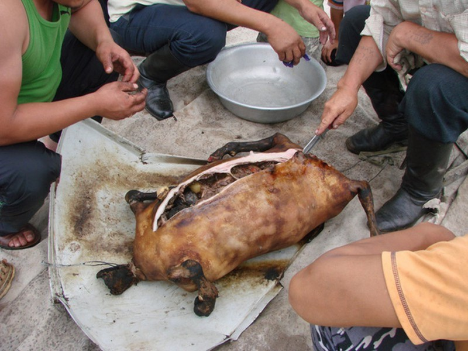 Boodog - Mon an kinh di gay tranh cai vi qua tan bao-Hinh-6