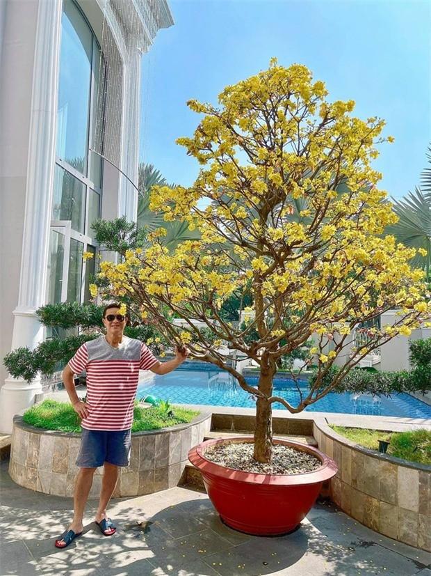 Bao Thy dai gia: Chon toan loai hoa hot trend dat tien trang hoang Tet-Hinh-2