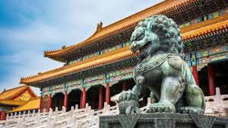 Ly do dai dien trong Tu Cam Thanh o Bac Kinh khong trong cay-Hinh-5