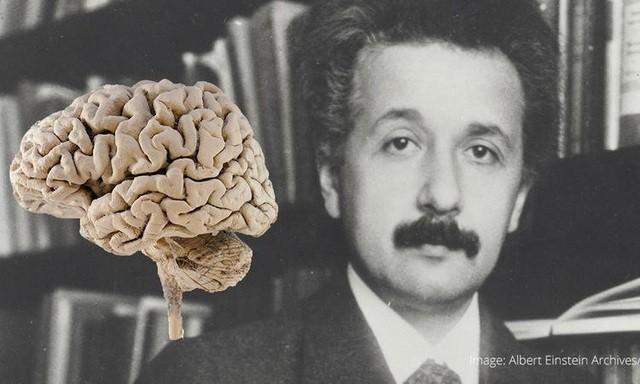 Bo nao cua thien tai Einstein duoc