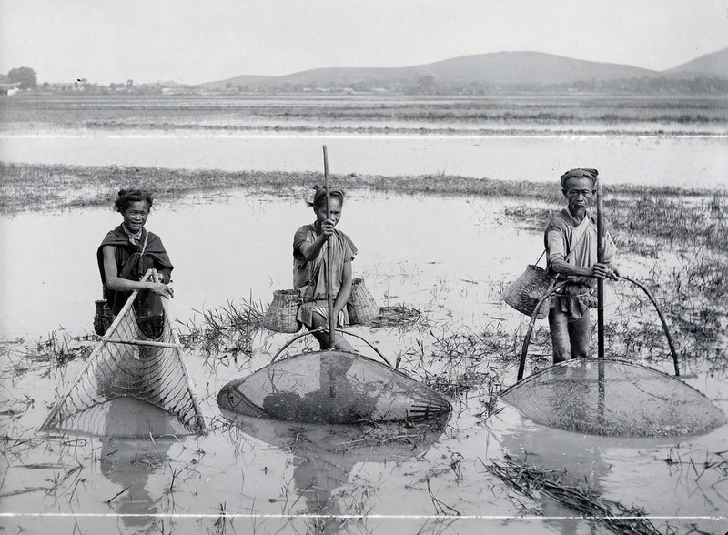 "Quai dan bai thuoc chua khoi benh ""kho noi"" cua vua Tran Du Tong-Hinh-8"
