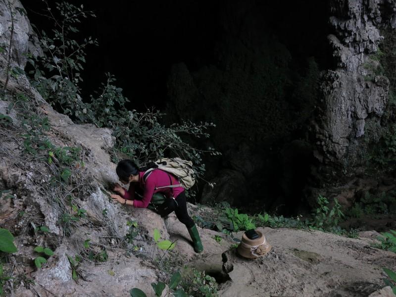 "Nha khoa hoc nu tham lang kham pha loai cay ""nho nhung co vo'"
