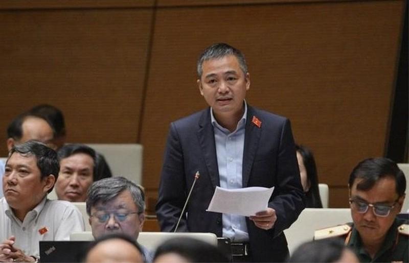 Lang nghe dai bieu Quoc hoi Nguyen Lan Hieu ke Cau chuyen tu trai tim-Hinh-2