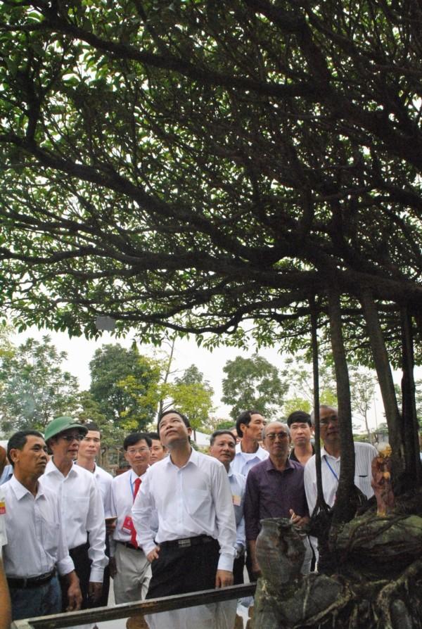 Tuyet pham sanh co 'Nhat toa kinh thien': Tra 11 ty, chu van lac dau-Hinh-5