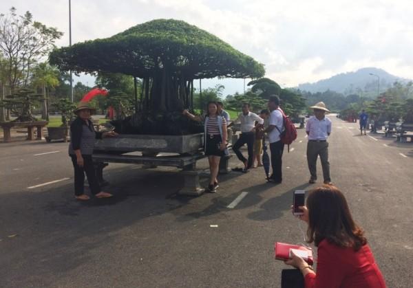 Tuyet pham sanh co 'Nhat toa kinh thien': Tra 11 ty, chu van lac dau-Hinh-8