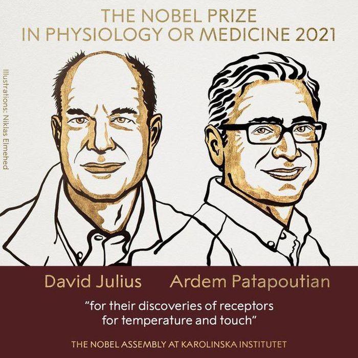 Chan dung hai nha khoa hoc My doat giai Nobel Y hoc 2021