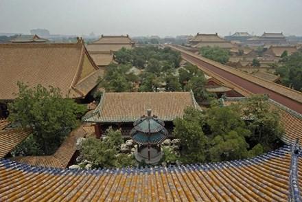 Nhung bi mat rung ron bac nhat o Tu Cam Thanh, Trung Quoc-Hinh-4