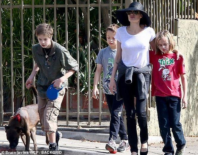 Brad Pitt: Angelina Jolie dang thao tung cac con-Hinh-2