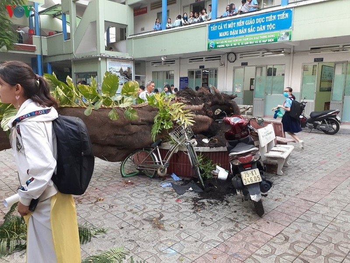 Cay do de hoc sinh tu vong: Canh giac nhung khong phan ung thai qua-Hinh-7