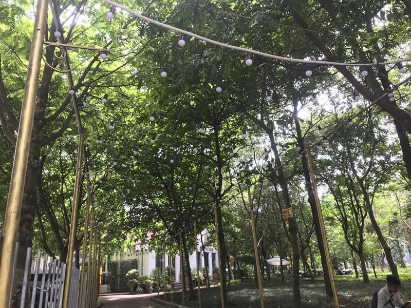 Trong Dong Palace Linh Dam Park vi pham TTXD: Vi sao gan 2 nam moi bi xu phat?-Hinh-4