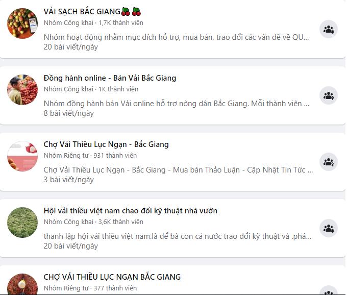 Vai thieu Bac Giang len ke sieu thi, san TMDT tieu thu nhanh... thu loi?-Hinh-3