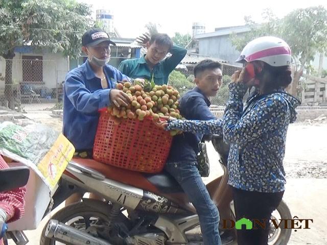 "Gia vai chin som 16.000 dong/kg, qua ""chay"" tren cay vi e am-Hinh-3"