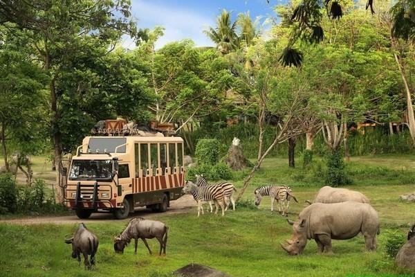 Dai gia Hong Kong bo chay khoi du an Safari 500 trieu USD