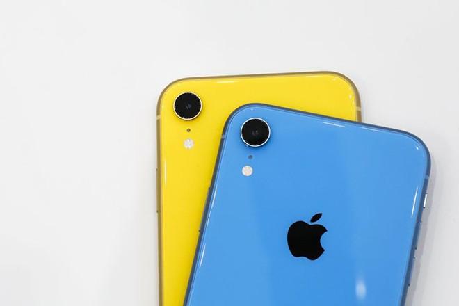 Cach iPhone XR tro nen vo doi khien nhieu nguoi bat ngo