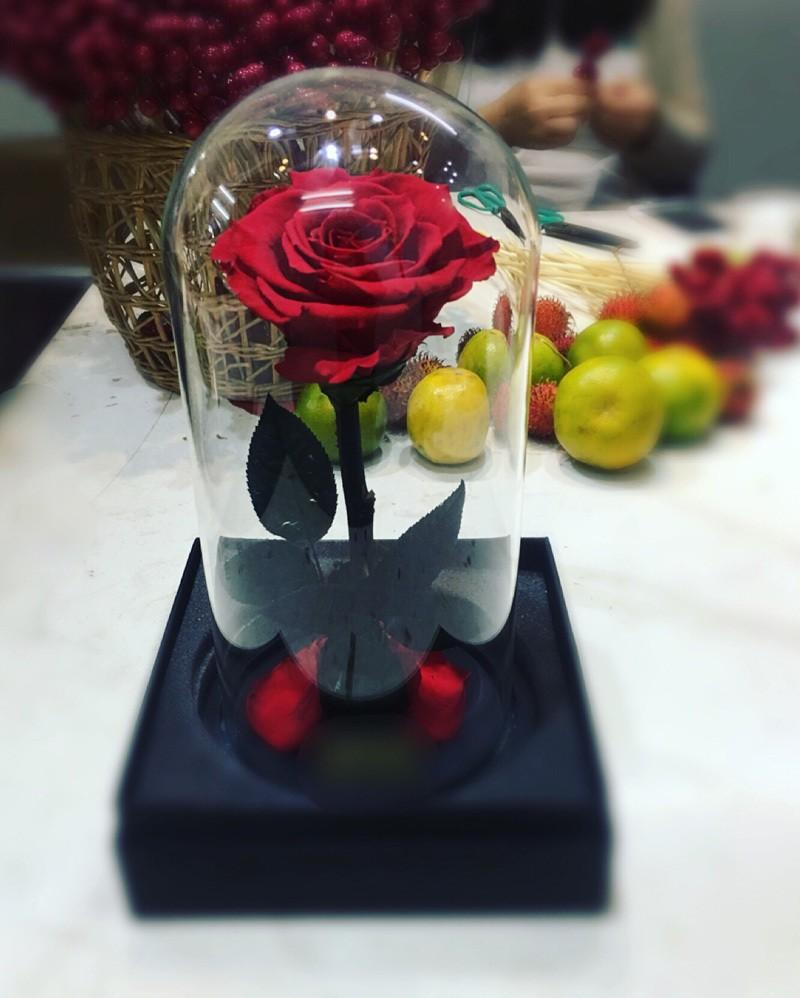 Bong hong xanh gia 3,5 trieu: Chong dam tang vo ngay Valentine?