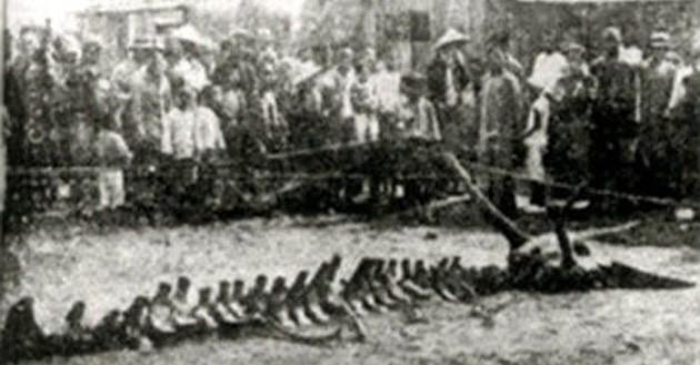 4 bi an hon 5.000 nam chua duoc giai ma cua Trung Quoc-Hinh-3