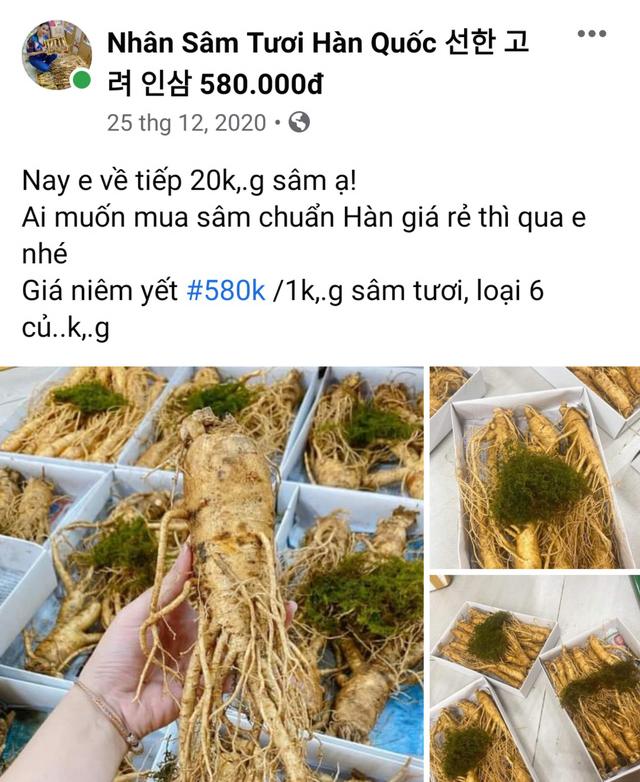 Sam tuoi Han Quoc gia 500.000 dong/kg?-Hinh-3