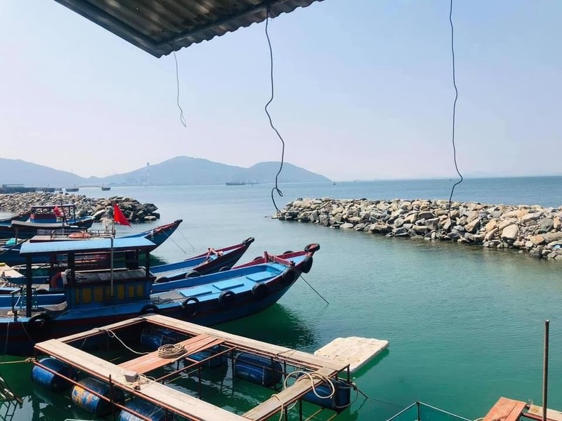 Con nhay tanh tach, tien trieu moi kg van khong co de ban-Hinh-2