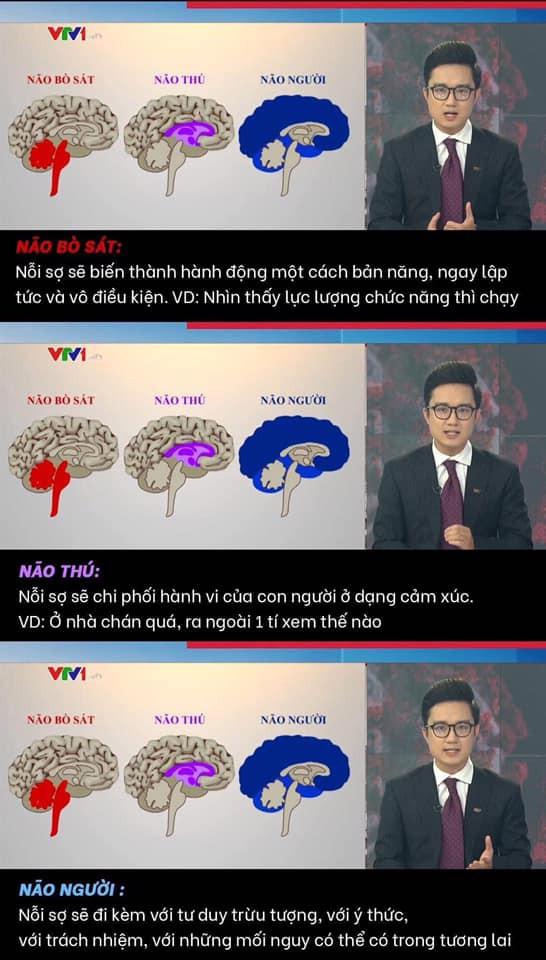 Phan tich truong hop vi pham gian cach, VTV khien netizen buc xuc