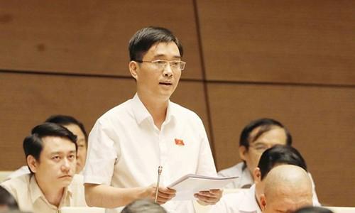 Dai bieu Quoc hoi: Nhieu ty phu om 'dat vang', 'dat kim cuong' cho thoi-Hinh-2