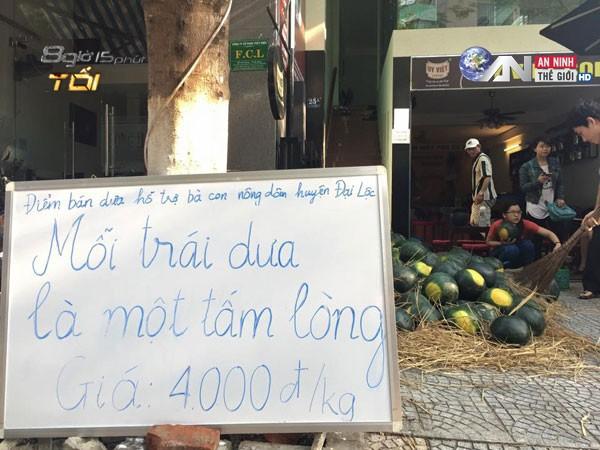 Truy tim nguyen nhan dua hau Quang Nam gia sieu beo-Hinh-2