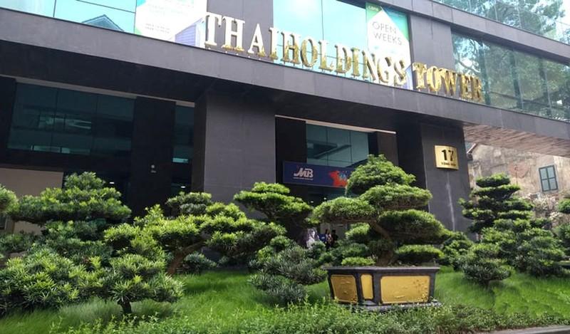 Thaiholding toan tinh gi khi thau tom 66% von Thaigroup cua bau Thuy?