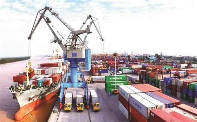 Container Viet Nam dua ra du tinh lai co the giam 12% trong nam 2021