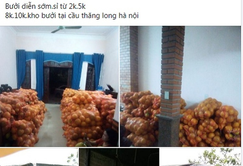 Thuc hu buoi Dien duoc rao ban chi 2.000 dong/qua