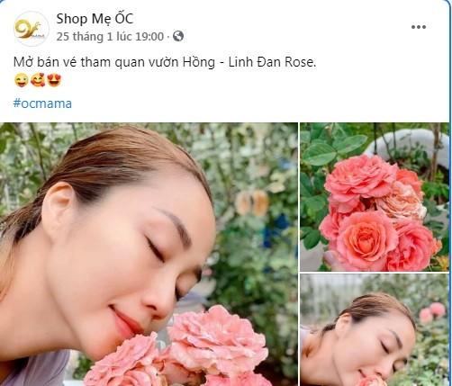 Ben trong biet thu ngap hoa hong cua MC Oc Thanh Van