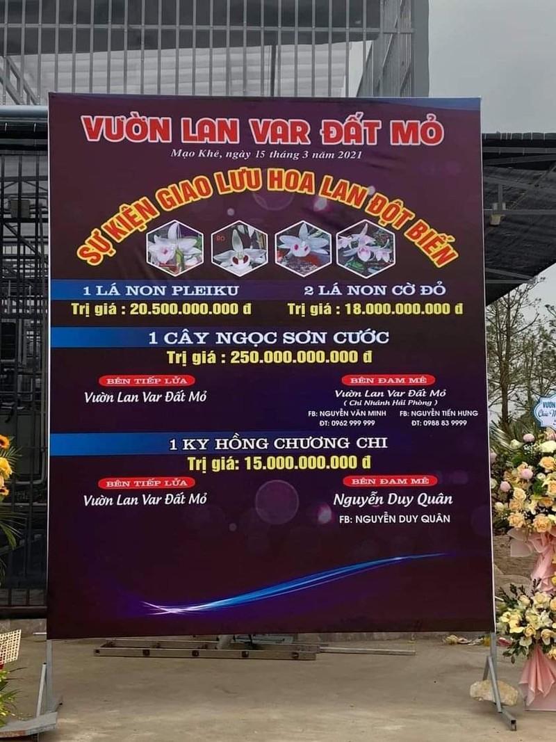 Nghi van quanh vu mua ban lan var Ngoc Son Cuoc 250 ty o Quang Ninh