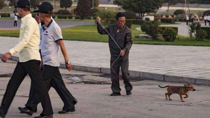 Loạt ảnh hiếm về cảnh 'ăn chơi' hằng ngày ở Triều Tiên - Ảnh 3