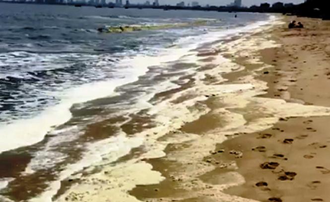 Biển Đà Nẵng bất ngờ đổi màu, bọt vàng ố - ảnh 3