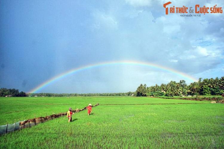 Y nghia tham thuy sau ten goi dia danh Quang Ngai-Hinh-2