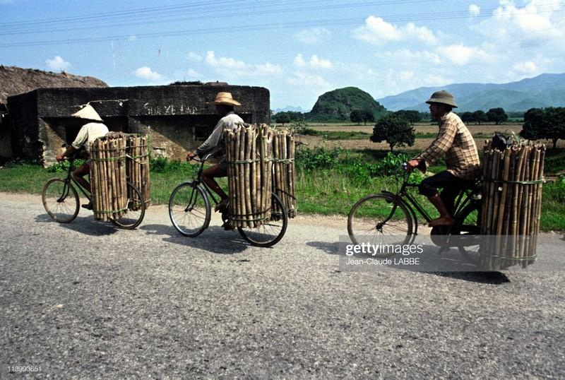 Boi hoi nhin lai cuoc song o nong thon Viet Nam dau thap nien 1990-Hinh-3