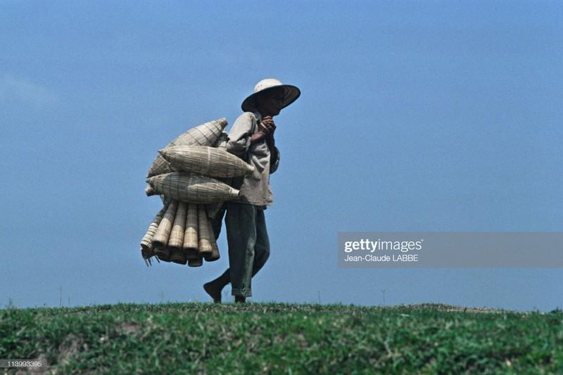 Boi hoi nhin lai cuoc song o nong thon Viet Nam dau thap nien 1990-Hinh-8