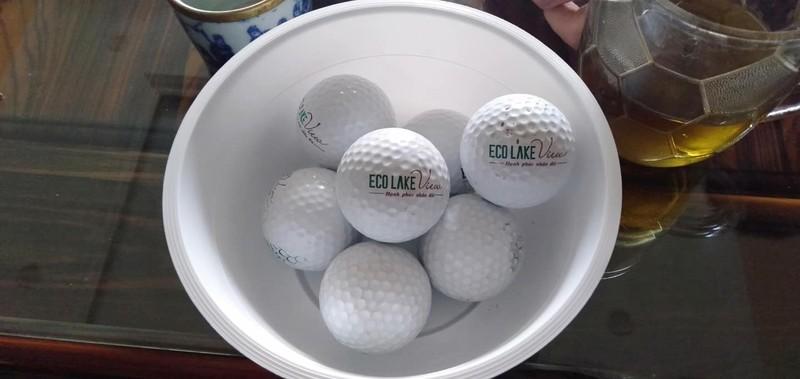 """Nguoi dan hung """"mua bong golf"""" khi song canh chung cu Eco Lake View-Hinh-4"""