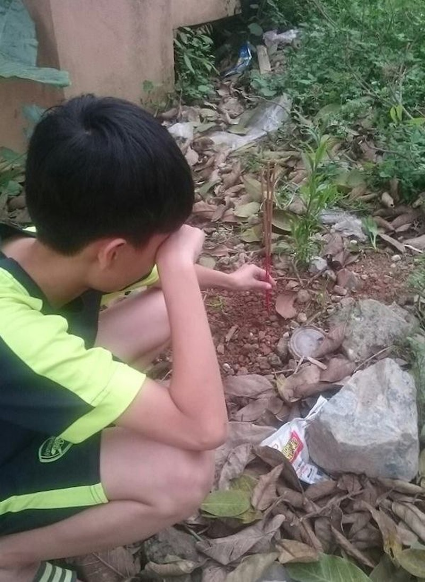 Chi co nhung nguoi nuoi dong vat moi hieu: Ga nuoi hai nam bi chet, cau be mai tang cho tron tinh-Hinh-3