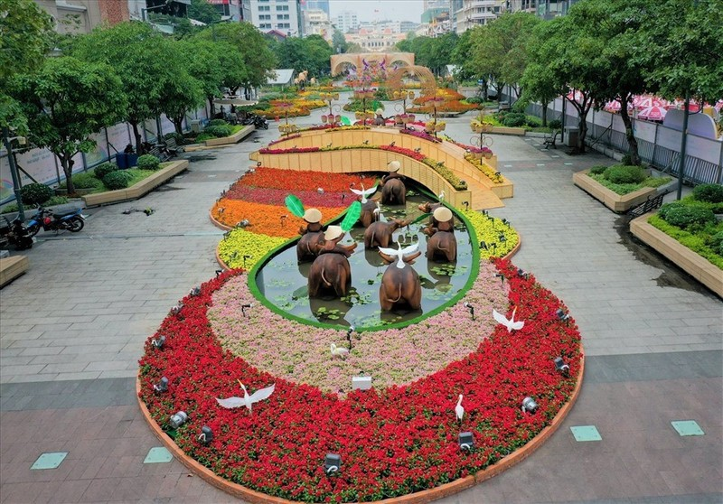 Nova Group tai tro duong hoa tai TP.HCM, Phan Thiet va Bien Hoa-Hinh-2