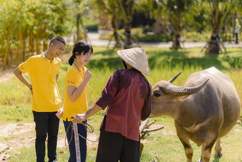 Thieu nhi Quoc te hao huc kham pha Vinpearl Nam Hoi An-Hinh-5