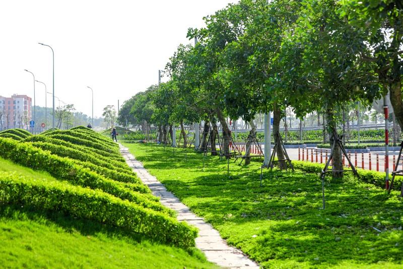 "Kham pha khong gian ""resort"" tai San bay khu vuc hang dau chau A 2020-Hinh-4"