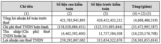 Vi sao loi nhuan Thanh Thanh Cong - Bien Hoa