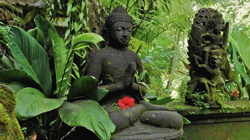 Phat day: Luat nhan qua doi voi nguoi ac khau-Hinh-2