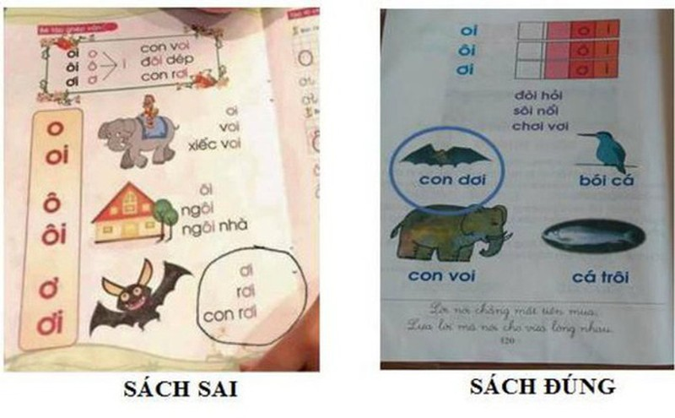 "Hoang mang sach Tieng Viet day tre doc ""con doi"" thanh ""con roi""-Hinh-2"