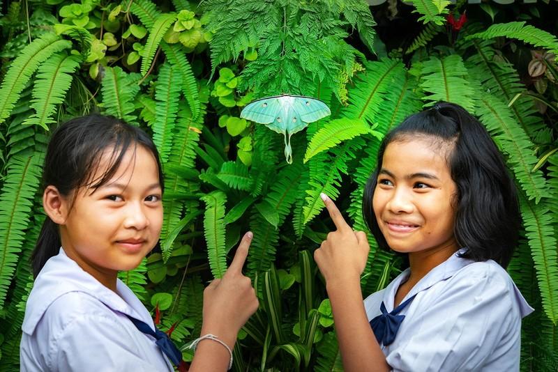 Kham pha ben trong khu bao ton con trung o Thai Lan-Hinh-4