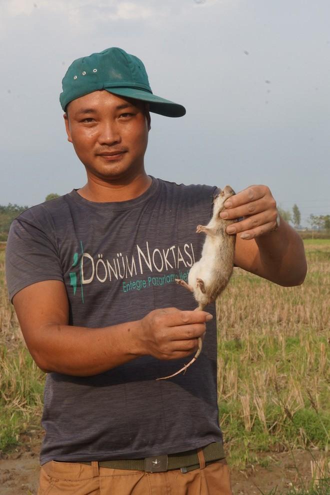 Thit chuot dong, long vong giai thoai-Hinh-3