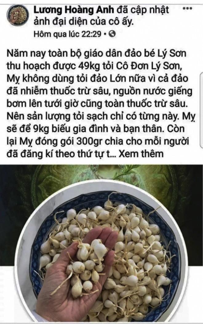 Facebooker Luong Hoang Anh bi moi lam viec vi tin don ve toi Ly Son