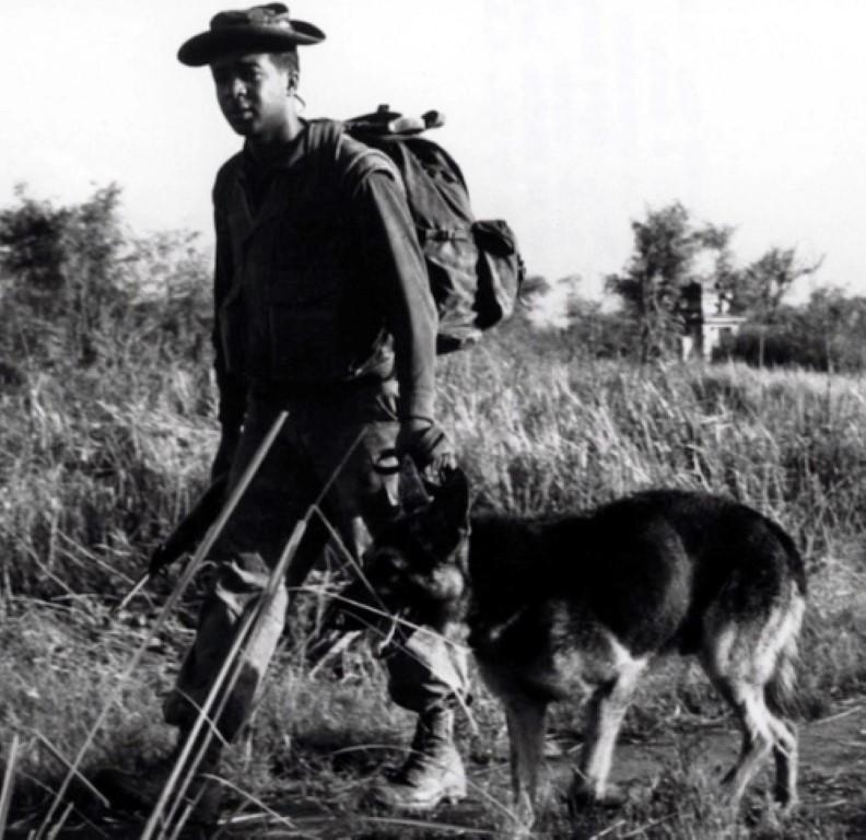 Ly giai viec cho quan su cua My chet nhu nga ra o Viet Nam-Hinh-9