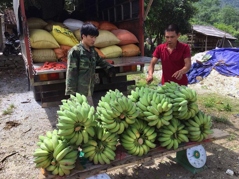 """Bo nghe """"oach xa lach"""" vao nui trong 5ha chuoi Thai Lan-Hinh-2"""
