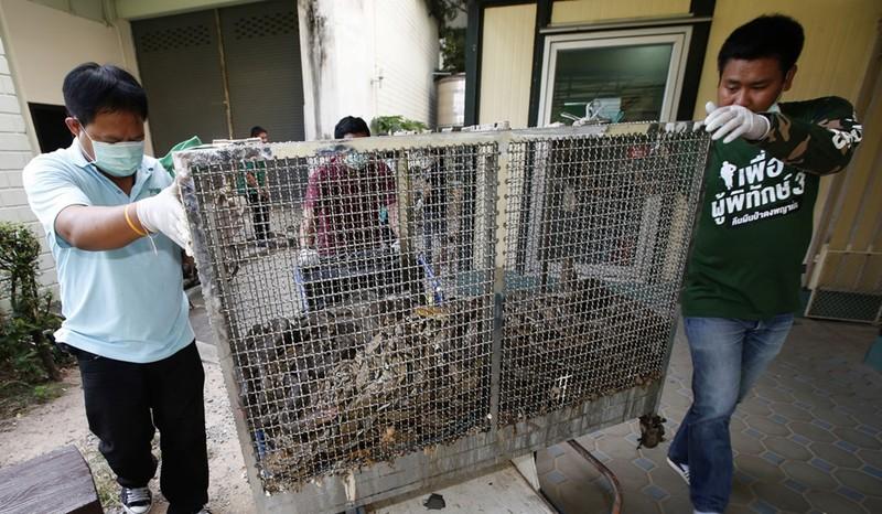 Van nan ran o Bangkok: Linh cuu hoa bat ran nhieu hon dap lua-Hinh-3